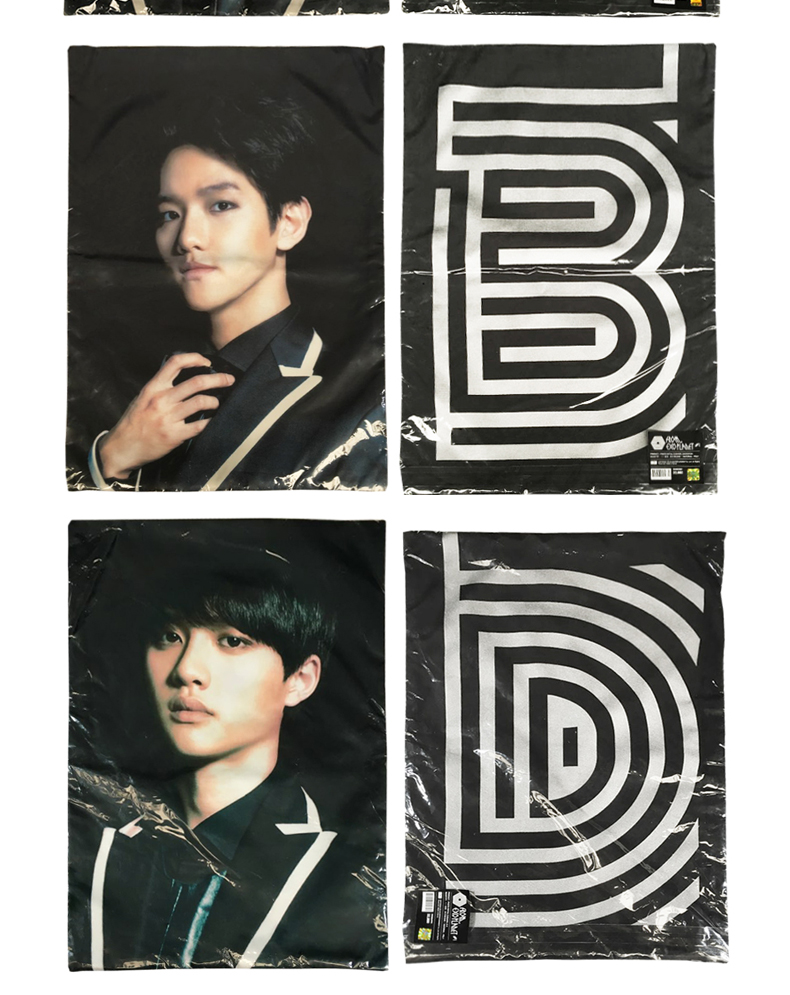 EXOPLANET #1 Cushion Cover (Baek Hyun) [EXO Concert Goods]